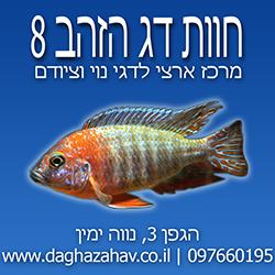 לוגו חוות דג הזהב 8