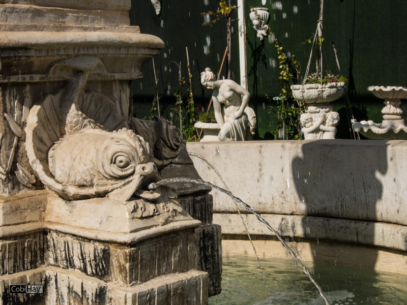 פסלי דגים מקיפים את בסיס המזרקה
