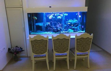 אקווריום בר עם תאורה כחולה ושלושה כיסאות נוחים לפני הבר
