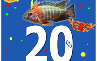 """20% הנחה על כל דגי הנוי בחווה, טל""""ח, אין כפל מבצעים, המבצע עד גמר המלאי, עד יום שישי 22.3.2019"""